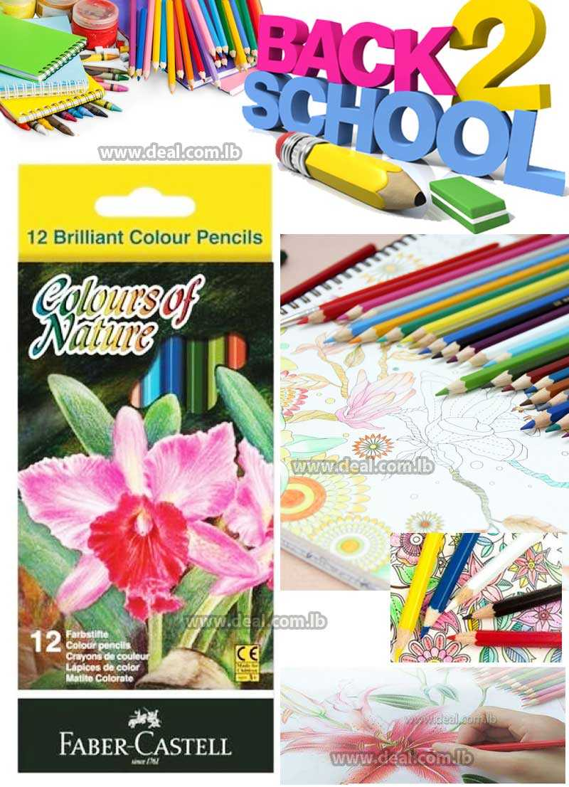 Faber Castell  12 Brilliant colour pencils