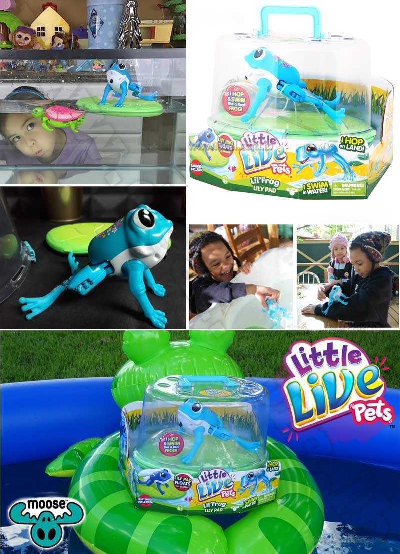 Little Live Pets Lil Frog Lilypad