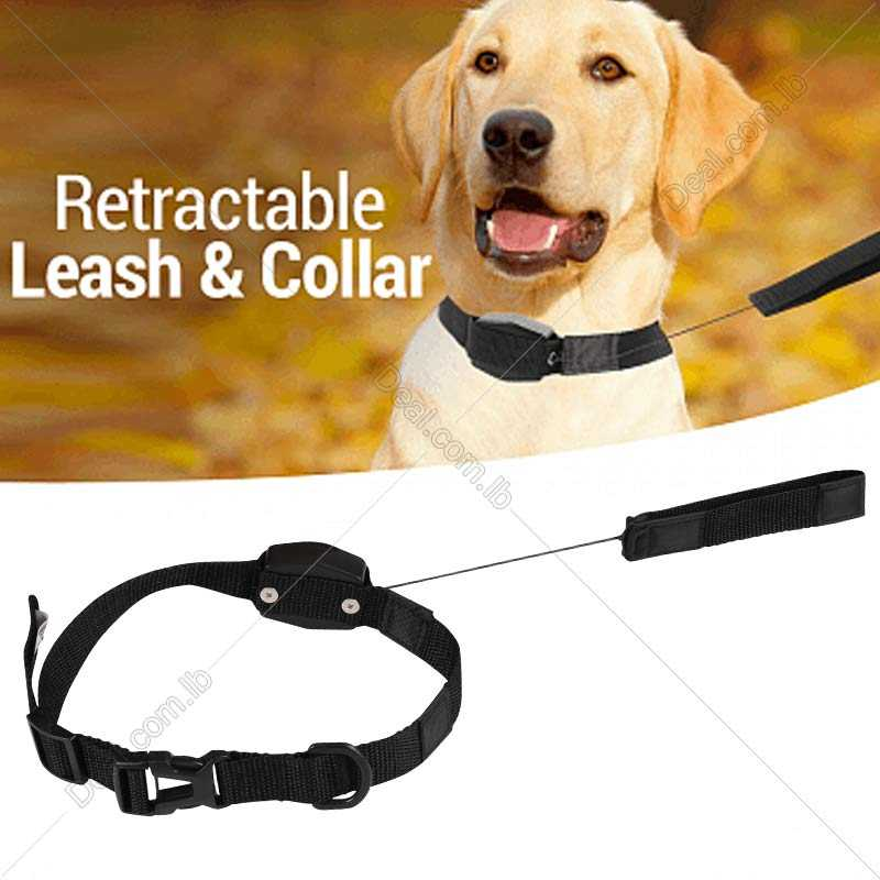 Lucky Leash