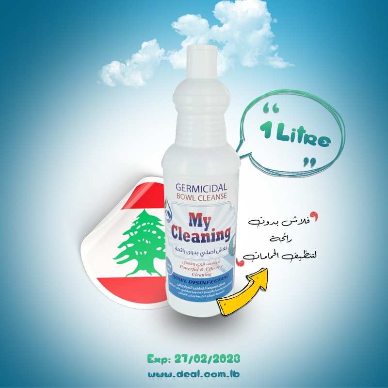 My Cleaning Flash Cleaner 1 L